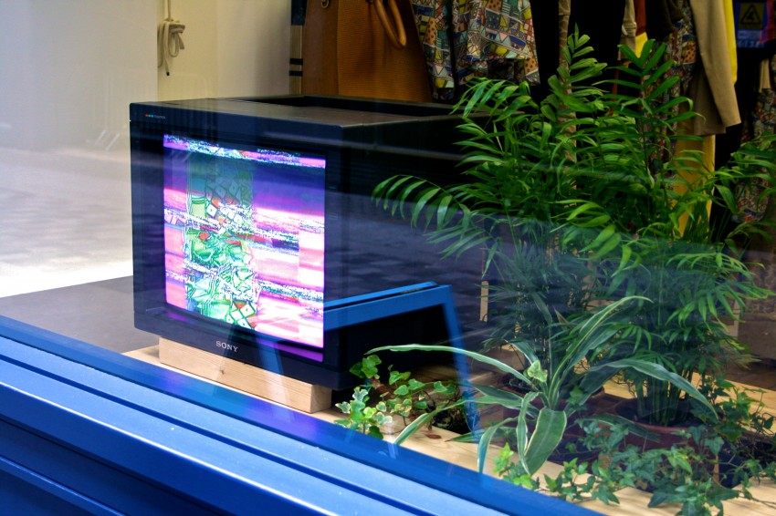 Current Season_video installation copy